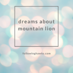 Dreams About Mountain Lion