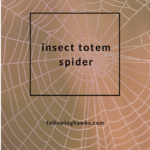Insect Totem: Spider