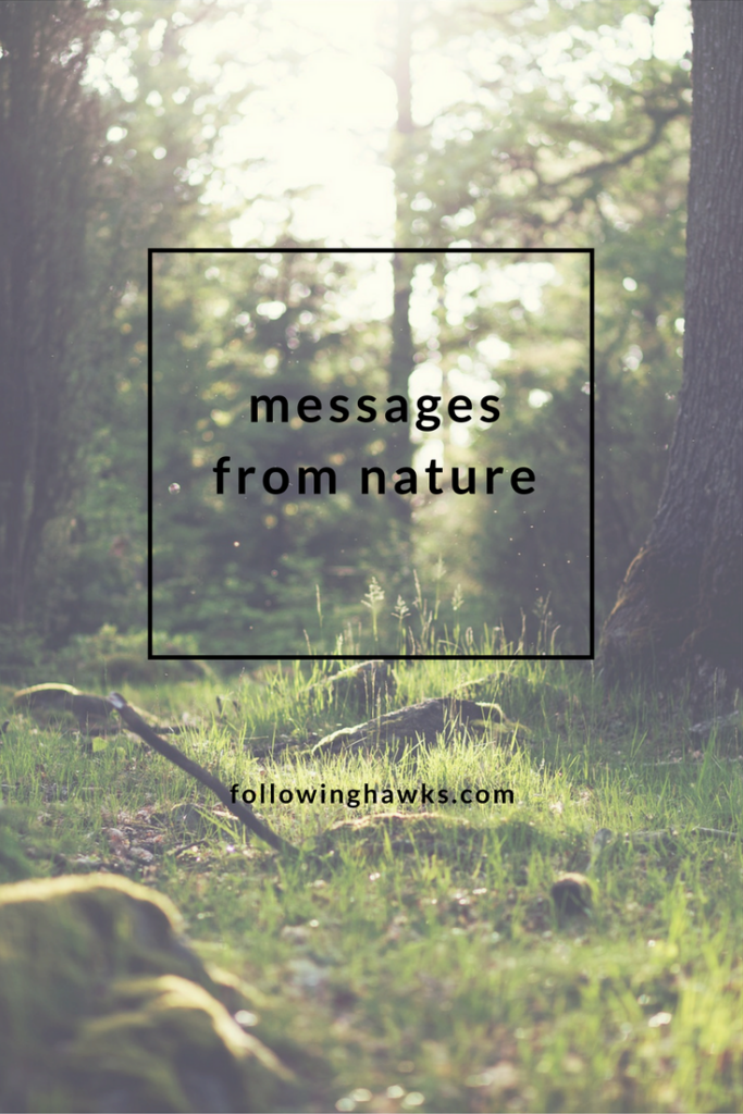What does nature have to say to us?