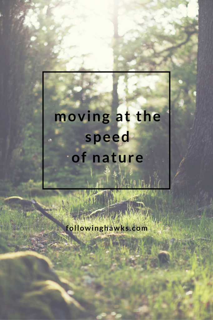 Nature vibrates at a slower speed than we do.