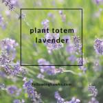 Plant Totem: Lavender