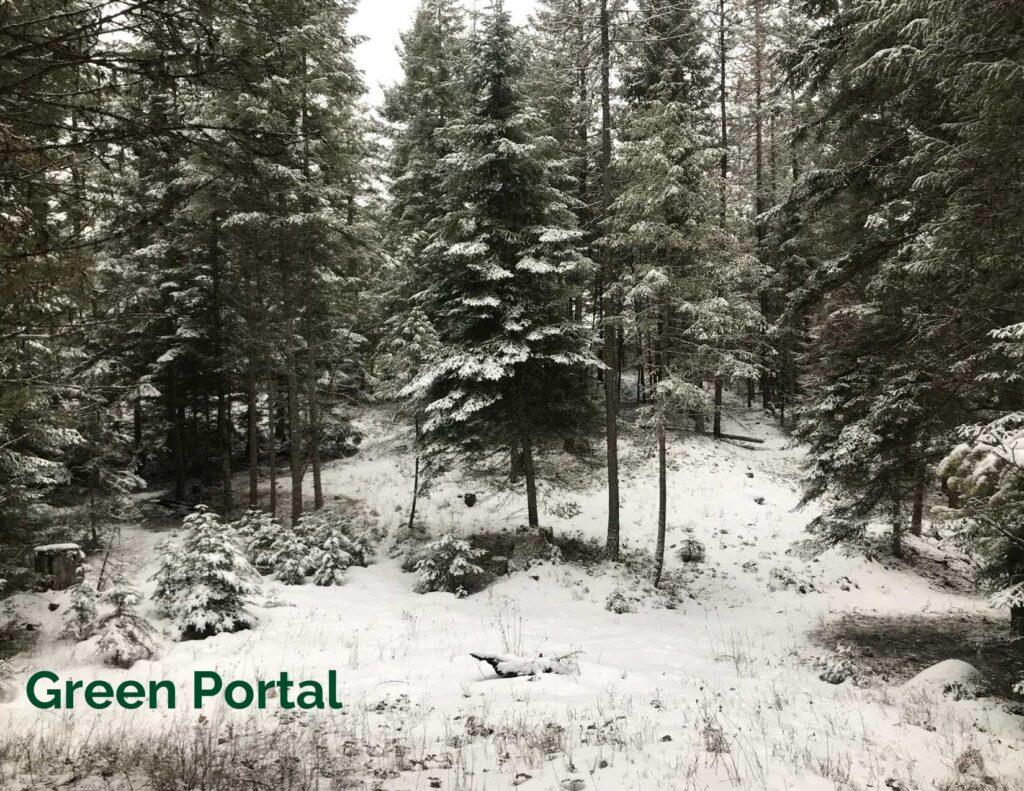 Green Portal | Montana Portals